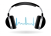 transcribe your 20 min audio or video