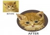 draw Awesome vector cartoon of your pet