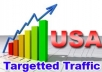Give you 500 Guaranteed USA Visitors to your site with proofs