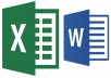 complete Any Type Of Data Entry Work In Excel And Word