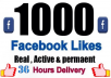 add 1000 + Permanent Facebook likes Instantly