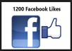 Provide 1,200 Real & Active Facebook Likes