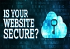 I will professionally scan your website from any possible vulnerabilities that might be used to hack you and even fix them for you.