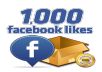 Add 500-1000 LIKES on personal account or page on FACEBOOK...100%genuine