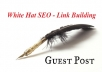 Publish 2 Guest Posts on Beauty Fashion Niche SEO