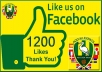 add 1200+ Facebook Likes