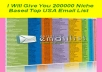 give you 200,000 (200K) niche based top USA Email Marketing lists