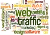 give you 3000 quality country targeted traffic to your website