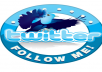 add more than 10000+ followers to your Twitter WITHOUT needing your password in Less then 12 hours and without harming your account