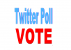 give 125 twitter poll votes on your online contest.
