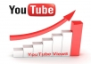 send you unlimited views to your youtube video for one month