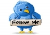 send 400+ FOLLOWER for your twitter account