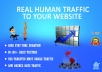 Drive Google Real Human Unlimited Traffic To Your Website