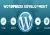 develop WordPress site