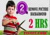 professionally remove any photo background 2 Hrs