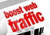 drive 10000 USA traffics to your websites