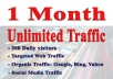 Get 1 Month UNLlMITED Web Traffic, Targeted and Safe