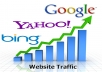 drive unlimited real traffic for 30 days from google and fb