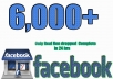 will give you 6,000 Facebook likes for your fanpage nondrop real