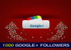 add real 1000 Google plus follower or circles to your page