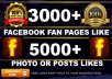 add 3000 fanpage or 5k post likes