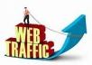 drive high quality and genuine 6000 traffic to your website