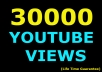 give 30000 USA youtube views +500 youtube likes