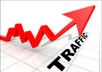 give Over 10,000 Views for your website/blog real Web TRAFFIC + Live stats