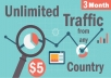 give unlimited real target traffic for 3 months