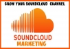 Soundcloud promotion 2500 plays with 20 likes repost comments very fast with best quality