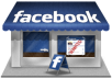 give you 500+ like real and active fans to your facebook fanpages no admin rights