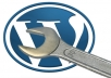create a full wordpress website for you in just