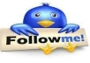 give you 1000 Permanent Twitter Followers