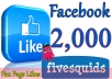 Give you 2,000 Facebook Likes Real,& Fast Service try it now