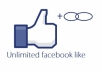give you 300+ guaranteed facebook likes on your page
