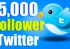 We will add 5,000 Followers to your Twitter Page within 1-5 days.