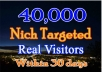 drive real 500 daily visits to your website unlimited traffic