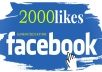 give 2000++ Facebook Page Like