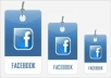 provide 350 USA facebook likes within 2 days.no admin access