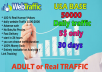 drive 1000 real traffic your website