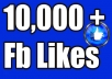 Give you 10,000 Instantly started Guaranteed Facebook likes