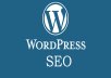 Do Complete Wordpress SEO And Wp Optimization