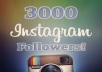 send you 3000 followers on Instagram
