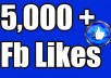 GIVE 5,000+ NON DROP PERMANENT HIGH QUALITY FACEBOOK FAN PAGE LIKES