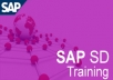 teach any one topic of SAP SD/MM/PP