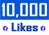 Add 10,000 Fan Page Likes ( Instant within few Hrs )
