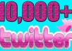 GIVE YOU 10,000 TWITTER FOLLOWERS (+bonus)