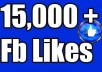do 15,00 fanpage likes at cheapest rate
