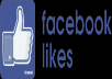 i will give 5000 facebook page likes to your facebook page  Grow your facebook page real likes worldwide likes fast and cheap delivery