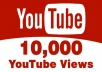Provide you 10,000+ High Quality youtube Views 100% safely.